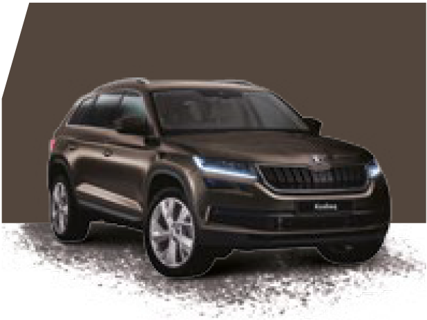 Kodiaq Magnetic Brown